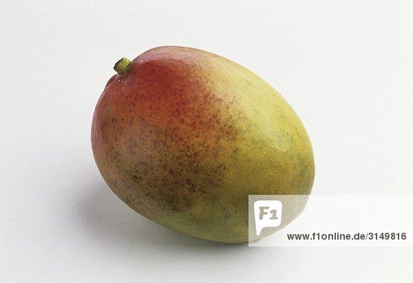 Eine Mango vor weissem Hintergrund