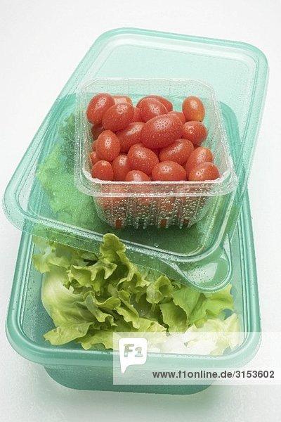 Blattsalat in Frischhaltebox  Tomaten in Plastikschale