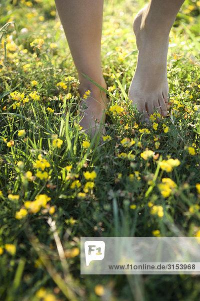 Person barfuss laufen auf Gebiet der Wildblumen  abgeschnitten