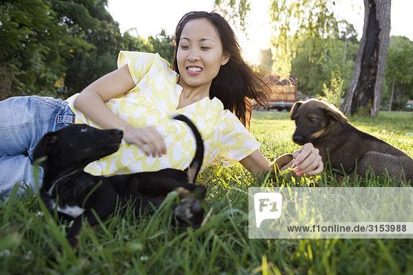 Frau liegen im Gras Spiel mit zwei Welpen