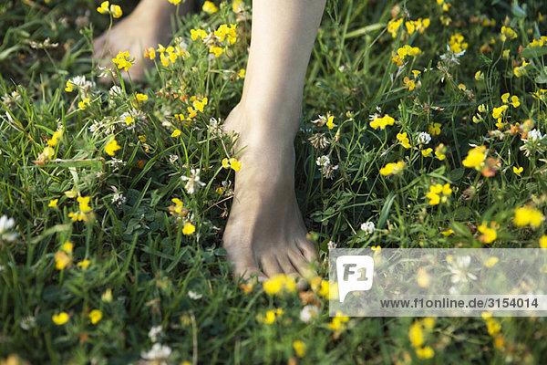 Frau barfuss laufen auf Gebiet der Wildblumen  abgeschnitten