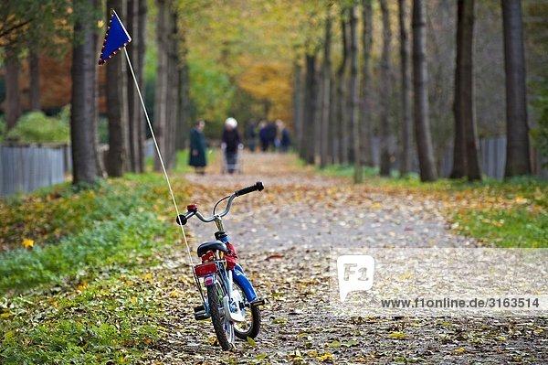 Kinderfahrrad steht verlassen auf einem Parkweg