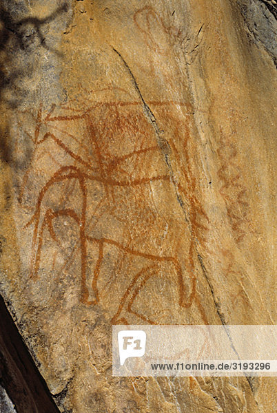 Rock Wandgemälde der Eland  Elefant  Rappenantilope Rock Wandgemälde der Eland, Elefant, Rappenantilope