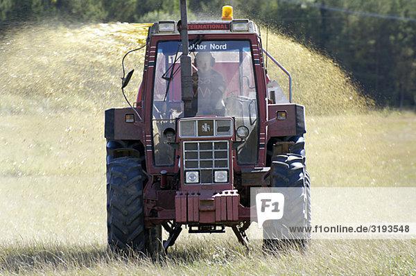 Landwirtschaft  Schweden.