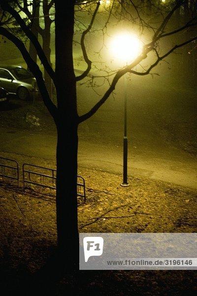Street Licht in einem Park in der Nacht  Schweden.
