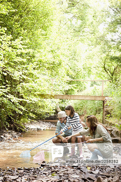 Family playing with nets in stream