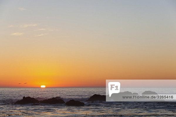 USA  Kalifornien  Sonnenuntergang über Meer