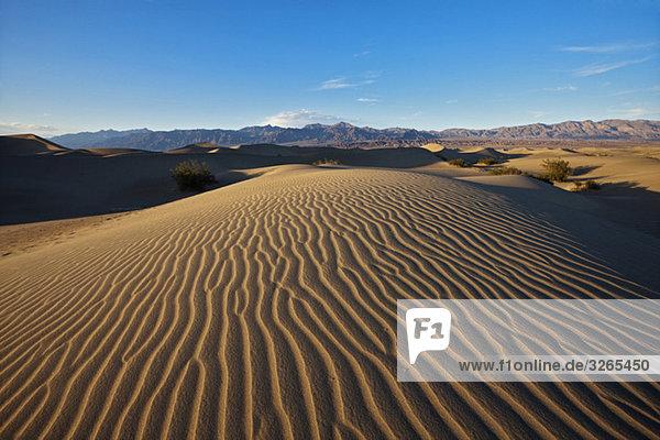 USA  California  Death Valley  Sand dunes