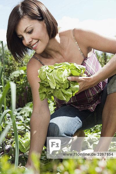 Frau im Garten mit Salat  lächelnd  Porträt