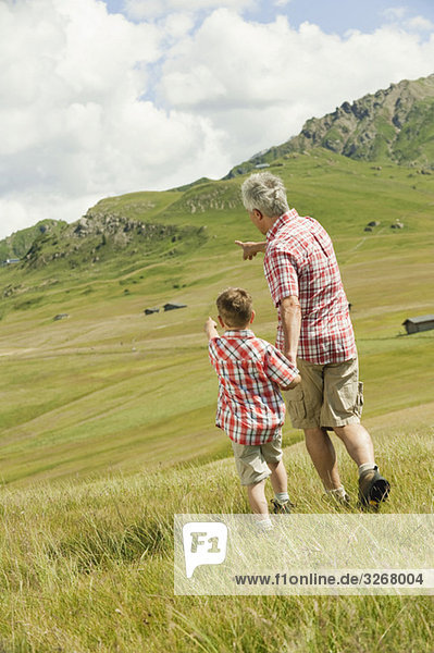 Italy  Seiseralm  Grandfather and grandson (6-7) walking in field  rear view