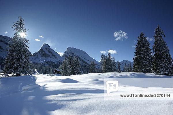 Winterlandschaft im Toggenburg