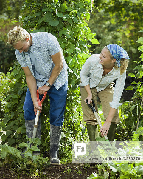 Junges Paar  das in einem Garten arbeitet