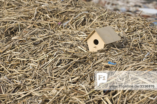 Vogelhaus auf Mulchhaufen