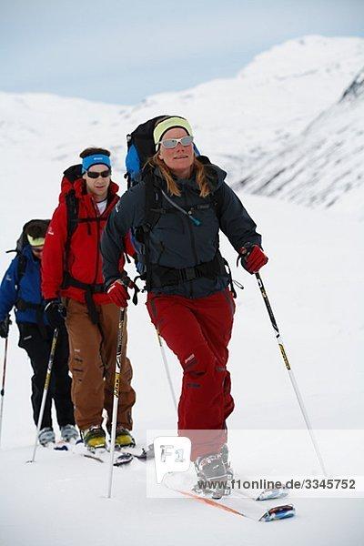 Three skiers  Abisko  Lapland  Sweden.