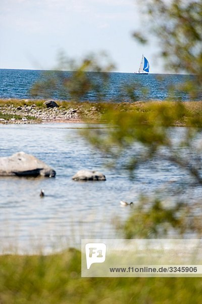 Ein Segelboot von den Horizont  Schweden.