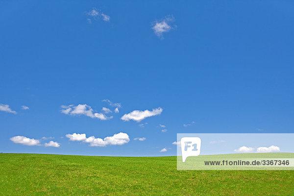 Landwirtschaft,  Botanik,  Wolke,  Wolken,  Farbe,  Farbe,  Land,  Landschaft,  Tschechische Republik,  Daytime,  Ökosystem,  Ökosysteme,  außen,  Feld,  Felder,  Gras,  Wachstum,  Landschaft,  Landschaften,  Stimmung,  Natur,  niemand,  Outdoor,  im Freien,  außen,  friedliche,  Ruhe,  Plain,  Plains,  Stille,  Ruhe,  Rural,  Seite,  Seiten,  Scenic,  Landschaften,  Stille,  Single,  Himmel,  TranquilRuhe,  Vegetation