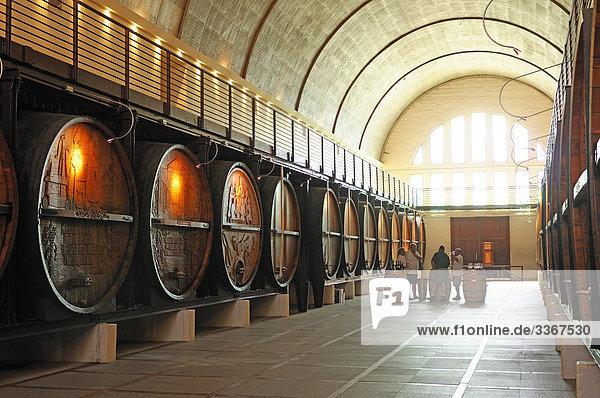 KWV Weingut  Weinkeller  Paarl  Western Cape  Südafrika  Innenaufnahme  Hallenbad  Menschen  Wein Region  Fässer  vine KWV Weingut, Weinkeller, Paarl, Western Cape, Südafrika, Innenaufnahme, Hallenbad, Menschen, Wein Region, Fässer, vine