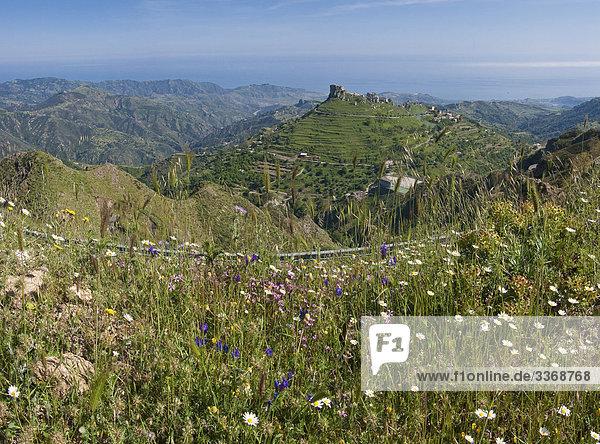 Nationalpark Felsbrocken Botanik Wohnhaus Gebäude Steilküste grün Dorf Wiese Kalabrien Italien Bergdorf