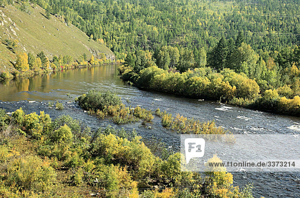 Fluss und Bäume in Sibirien
