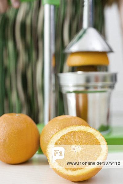 Mit der Presse frischen Orangensaft auspressen