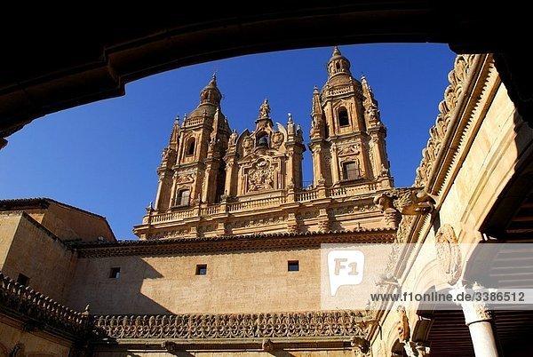 The Clerec?a view from the patio of the Casa de las Conchas. 17-18th century. Salamanca. Castilla y Leon. Spain