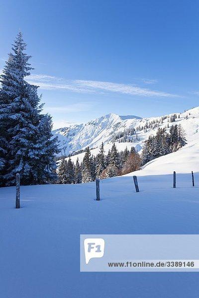 Winterlandschaft in Dienten am Hochkönig  Österreich