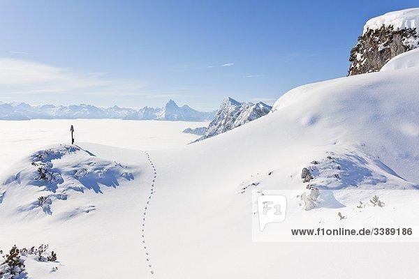 Gedenkkreuz und Spuren im Schnee auf einem Berggipfel  Berchtesgadener Alpen  Österreich  Erhöhte Ansicht