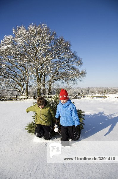 Children pulling christmas tree in snow