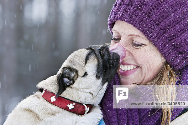 Pug licking the nose of a woman  close-up