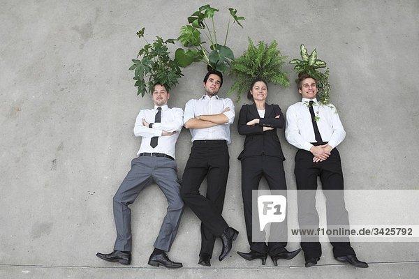 Geschäftsleute stehen Seite an Seite  Blattpflanzen auf dem Kopf  erhöhte Ansicht