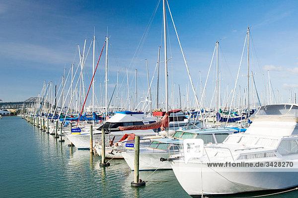 Yachthafen Westhaven  Auckland