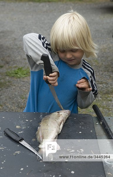 Boy schneiden Fisch