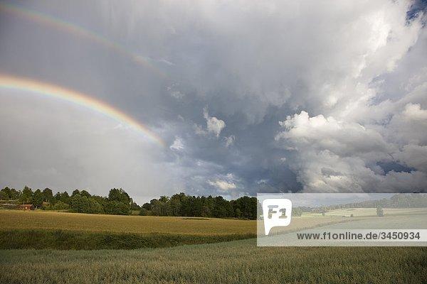 Regenbogen über Felder