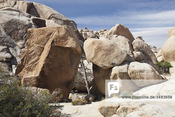 Felsbrocken im Joshua Tree Nationalpark  Kalifornien  USA
