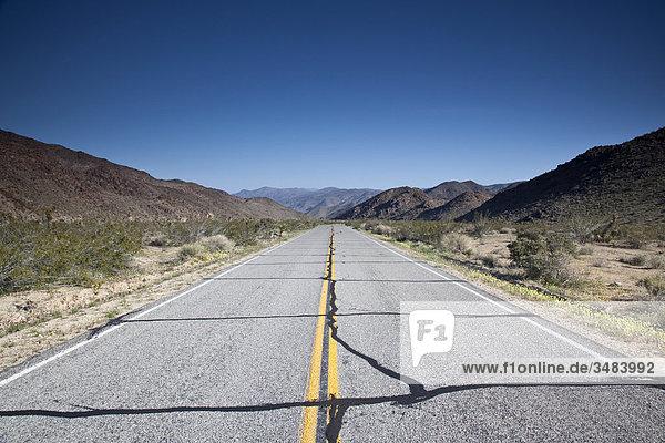 Landstraße durch den Joshua Tree Nationalpark  Kalifornien  USA  Fluchtpunktperspektive