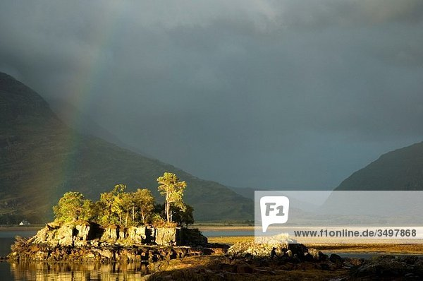 Europe  UK  Scotland  Highlands - a rainbow over a small island in Loch Torridon in the Scottish Highlands