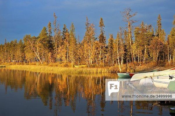 Lappland  Finnland  Pallas Yllastunturi National Park  Kesanki See im Herbst