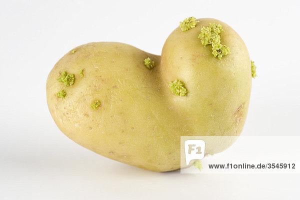 Verformte Kartoffel
