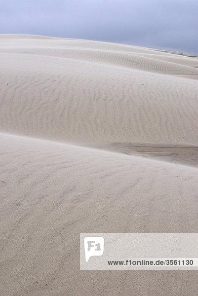Skandinavien  Dänemark  Jütland  Blick auf Sand dune