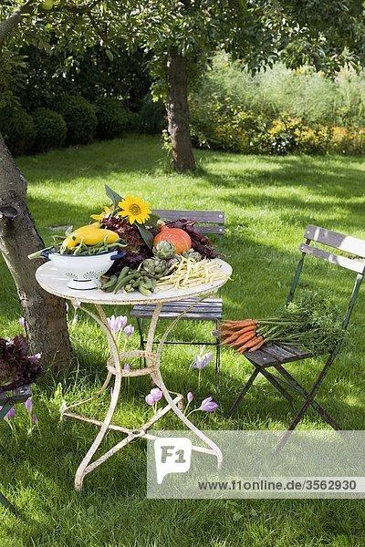 Rasen Gemüse Tisch