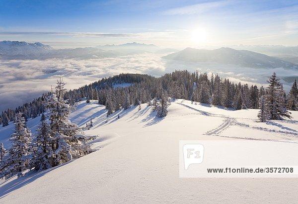 Blick bei Sonnenaufgang vom Hochkeil über das Salzachtal  Berchtesgadener Alpen  Österreich
