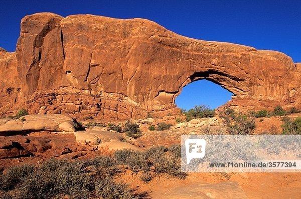 Arches National Park Moab  Utah  USA The Windows
