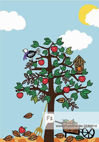 Vogel und Vogelhaus in einem Obstbaum