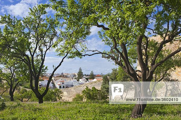 Blick auf Lagos mit Stadtmauer  Algarve  Portugal