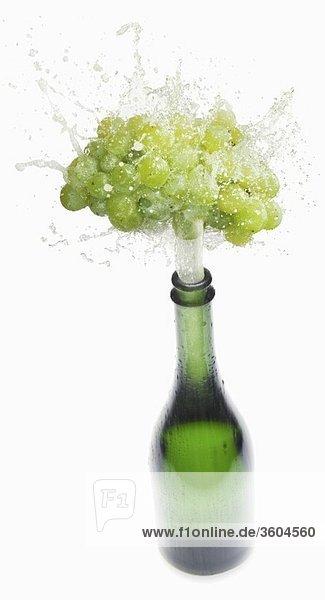 Sekt spritzt aus Flasche