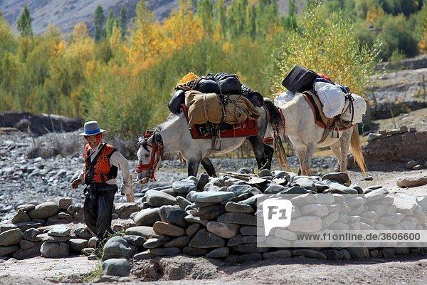 Indien - Jammu und Kashmir - Ladakh - zentrale Himalaya - Tal der Stok