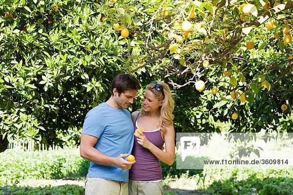 Couple by lemon tree