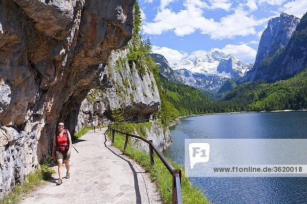 Gosausee und Dachsteingebirge  Österreich  Europa