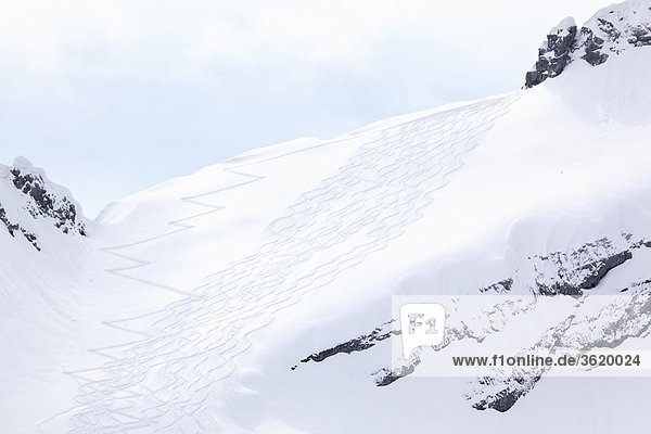Skispur  Watzmann  Berchtesgadener Alpen  Bayern  Deutschland  Europa