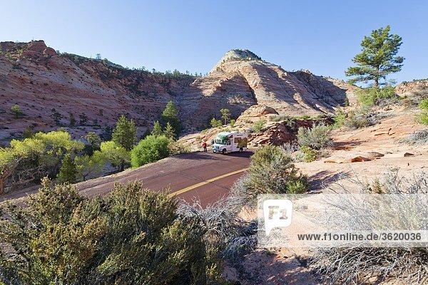 Zion Mt. Carmel Highway  Zion Nationalpark  Utah  USA
